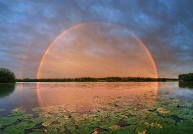 rainbowmirrord